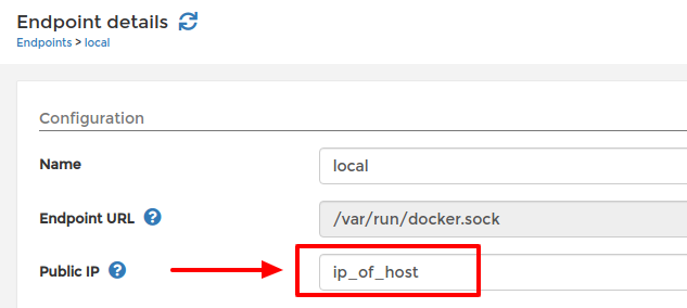 Setting public IP of local endpoint